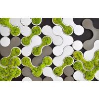 Формы для производства 3D панели с стабилизирующим мхом.